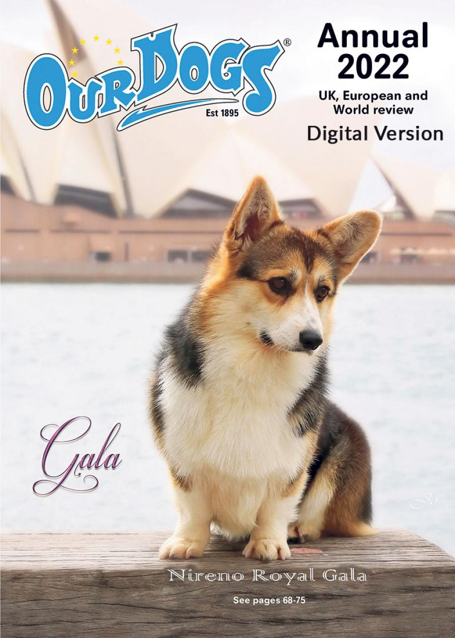 Buy a 2021 Our Dogs Annual
