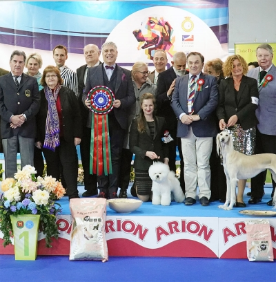 Oporto & Latin International Dog Show