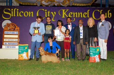 Mr John Stanton NZ Judged the 122nd  Silicon City Kennel Club Pointed Show and his  Best In Show was an American Cocker Spaniel BIS IND GR CH Helada Hills Absolute Owned By Pallab Saha.