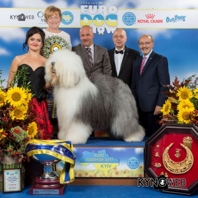 European Dog Show Kyiv 2017