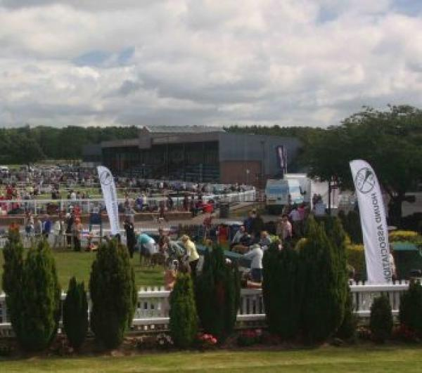Houndshow confirms cancellation
