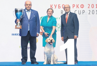 Supreme Best in Show and BIS (Day 2) at the Eurasia & RKF Cup Show was the Labrador Retriever, Bravo Messi, owned by N. Shatrukova. Also pictured are (left) the President of the RKF, Vladimir S. Golubev; and (right) Rafael De Santiago, President of the FCI.