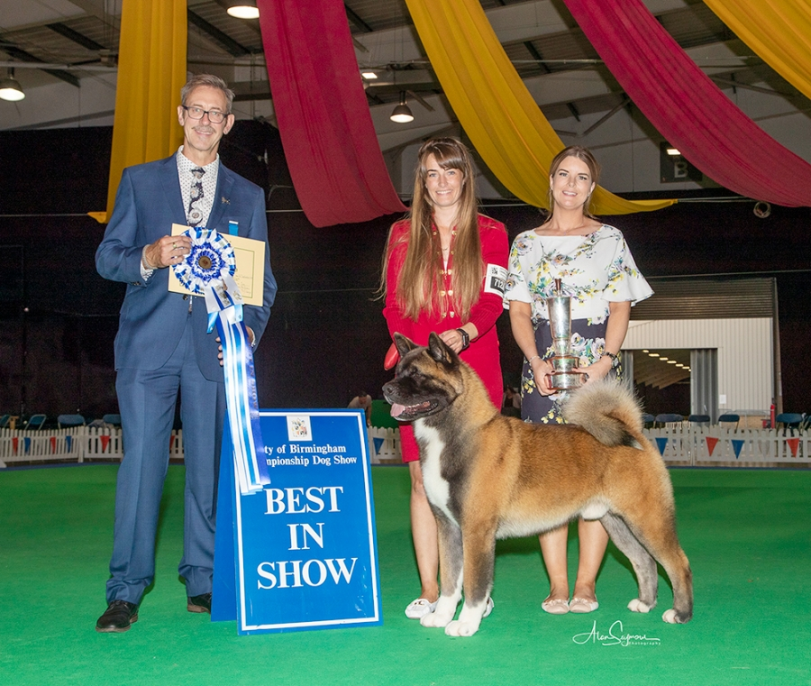Best in Show was the Akita Ch Am Ch Stecal's Remember My Name owned by Ms Carol & Miss Faye Bevis, Mrs Rachel Corr & Mr Keith Venezia
