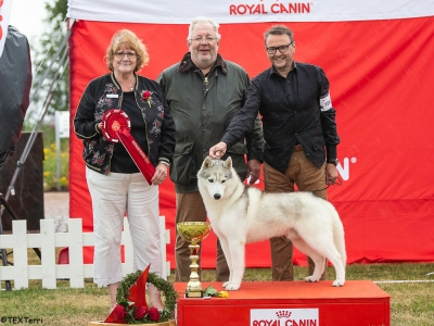 Best in Show at the Rose Of Kotka Show was the Siberian Husky, Int Ch Snowfrost Silver Stone, owned and bred by Tarja Veijonen, and pictured here with BIS Judge Mrs Tuire Okkola and Show Chairman, Harry Turtiainen.