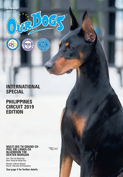 Philippine Circuit Digital Edition