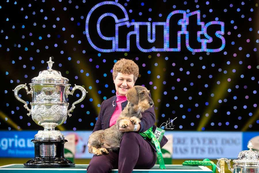 Best in show at Crufts last Sunday, to the crowd's delight, was the Wire Haired Dachshund, Ch Silvae Trademark owned by Duncan and Kim McCalmont. Maisie triumphed over seven fantastic dogs in the final, but stood out for judge Anne Macdonald. A delighted Kim said, 'It's something you dream of and you don't ever think will happen.'
