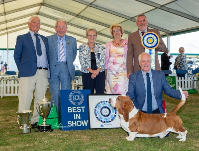 Best in Show was the Basset Hound Ch & It Ch Switherland Smart Image, owned by Phil Freer, pictured with John Appleby (Chairman), John Farrant (President), Dianna Spavin (Group Judge), Sally Duffin (Secretary) & Lee Cox (Best in Show judge)